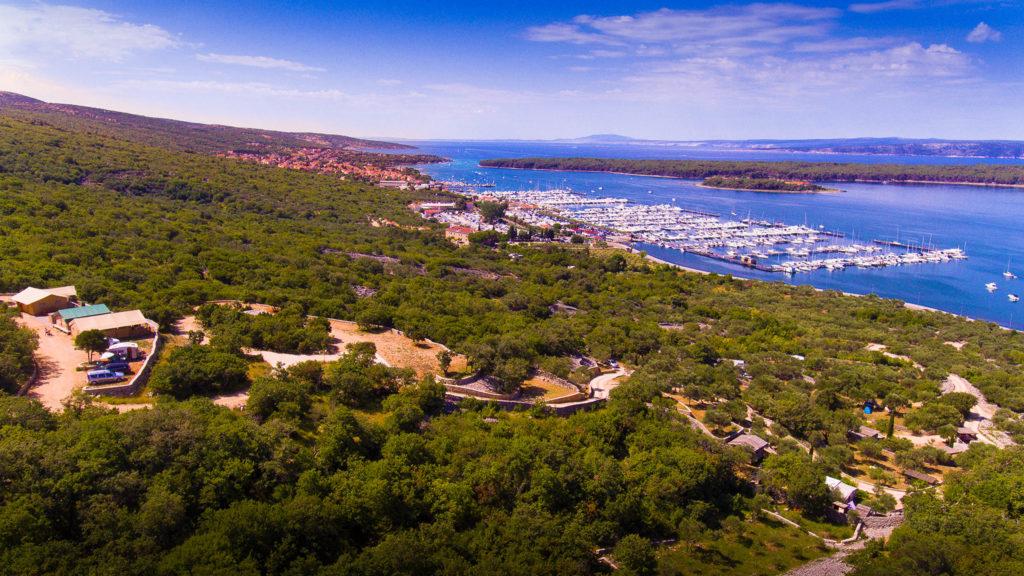 Marusina Olive Hills