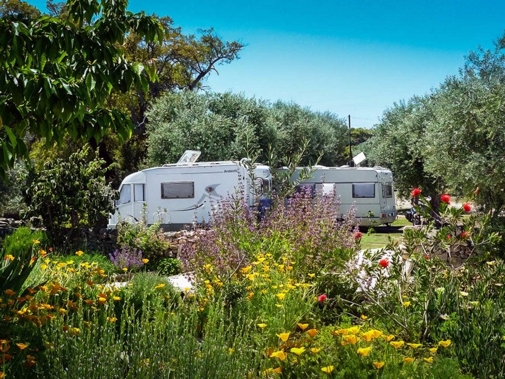Camping Asseiceira