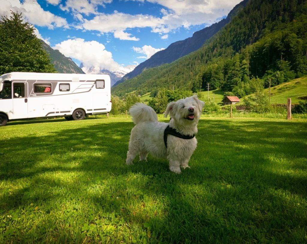 Dany's Camping